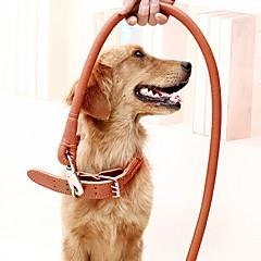 Katte Hunde Krave Hundesnore Justérbar/Udtrækkelig Sikkerhed Træning Solid Sort Brun Ægte Læder