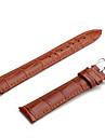 Femme Homme Bracelets de Montres Cuir #(0.014) #(0.2) Accessoires de montres