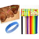 preiswerte Backzubehör & Geräte-Katze Hund Halsbänder ID Schilder Regolabile / Einziehbar Regenbogen Nylon Regenbogen