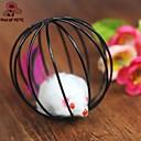 hesapli Kedi Oyuncakları-Kediler İçin Kilitli Oyuncaklar Mouse Kafesli Top Plastik Uyumluluk Kedi Kedi Yavrusu