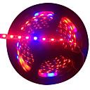 ieftine Role Pescuit-5m Cresterea luminilor 300 LED-uri 5050 SMD Roșu / Albastru Ce poate fi Tăiat / Auto- Adeziv 12 V 1 buc