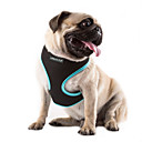 cheap Makeup & Nail Care-Cat Dog Harness Adjustable / Retractable Breathable Solid Nylon Mesh Orange Rose Green Blue