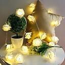 ieftine Lumini Pandativ-10 condus a crescut de crăciun decorare lumini șir de simulare a condus lumina post lanternă de iluminat zână lumini acasă flori partid