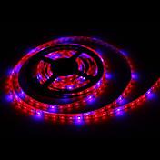 zdm 5 m 72 w 300 unids 5050 4r1b tira de la lámpara de la planta con 12 v / 6a eu / au / us / uk ac100-240 v power