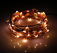 50-5M LED Bianco caldo Filo di rame Fata String Light Set con adattatore AC (100-240V)