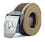 Men Wide Belt,Casual Others All Seasons
