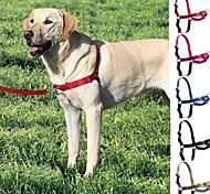 Dog Harness / Leash / Slip Lead Adjustable/Retractable Red / Black / Blue / Gray / Rose Nylon / Plastic / Stainless Steel