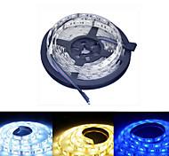 baratos -5m Faixas de Luzes RGB 60/m LEDs Branco Quente RGB Branco Amarelo Azul Vermelho DC 12V