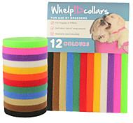 cheap -Dog Collar ID Tag Adjustable / Retractable Solid Nylon Rainbow