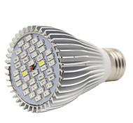 Недорогие -1шт 7 Вт. 600lm E26/E27 Растущие лампочки 40pcs Светодиодные бусины SMD 5730 Декоративная Холодный белый UV (лампа черного света) Синий