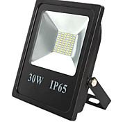 IP65 Waterproof Spotlight Lamp 30W 60LED 5730SMD Garden Outdoor Led Floodlight lighting(DC12-80V)