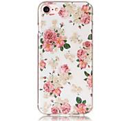 Недорогие -Для apple iphone se / 5s 5 чехол для корпуса прозрачный узор задняя крышка чехол сексуальная леди soft tpu