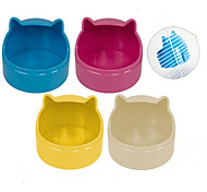 Bowls & Water Bottles Silicone White Yellow Blue Pink