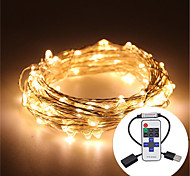 10M Waterproof 5V USB LED Light String Silver Copper LED Light String Cactus Wedding Party & RF Remote Control