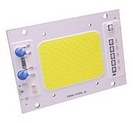 50w LED cob chip imperméable à l'eau ip65 lampe à lampe LED 220v intelligente pour diy spotlight projecteur blanc chaud / cool (1 pièce)