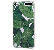 cheap -Case For Apple Ipod Touch5 / 6 Case Cover High Penetrating Powder IMD Banana Leaves Soft TPU Phone Case