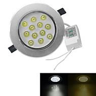 abordables Luces LED Empotradas-JIAWEN 12 W 960 lm 12 Cuentas LED LED de Alta Potencia Blanco Cálido / Blanco Fresco 100-240 V