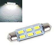Luz de Decoração 6 leds SMD 5630 Decorativa Branco Frio 200-250lm 6500-7500K DC 12V