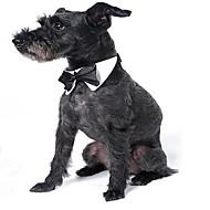 abordables Disfraces de Navidad para mascotas-Gato Perro Navidad Corbata/Pajarita Ropa para Perro Lazo Blanco/Negro Tejido Disfraz Para mascotas Fiesta Boda Halloween