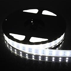 preiswerte LED Lichtstreifen-zweireihige 600x5050 SMD 144W 6000Lm IP67 wasserdicht Weißlicht LED-Streifen (5 Meter / DC 12V)