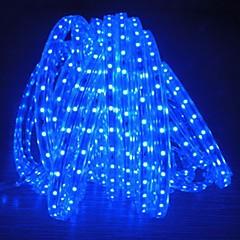billige LED-stribelys-480 lysdioder Varm hvid Hvid Blå Vandtæt Vekselstrøm220 AC 220V
