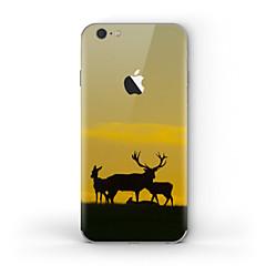 halpa iPhone tarrakalvot-1 kpl Kalvotarra varten Naarmunkestävä Matte Kuviointi PVC iPhone 6s/6