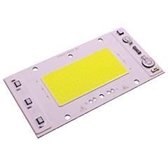 abordables Ledes-30w cob led chip 220v ac led proyector proyector bricolaje exterior calle luz de foco cálido / frío blanco (1 unidades)