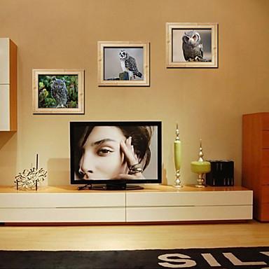 애니멀 로맨스 패션 3D 벽 스티커 3D 월 스티커 데코레이티브 월 스티커 자료 재부착가능 이동가능 홈 장식 벽 데칼