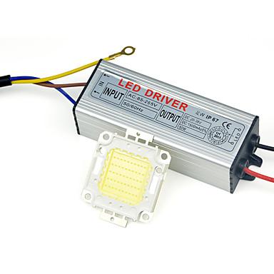 wysokiej mocy lampy LED cob Chip IP67 30W Sterownik 110V - 240V dla majsterkowiczów Naświetlacz wyróżnionym ciepły / zimny biały (1 szt)