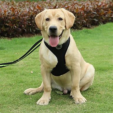 Câine Hamuri Portabil Pliabil Siguranță Mată Nailon Negru Roz