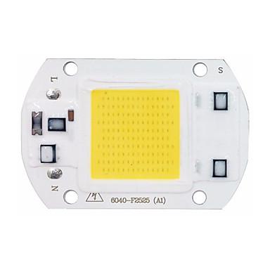عالية الطاقة أدى الكوز رقاقة 30W 110V المدخلات 220V جيم الذكية لديي أدت الفيضانات ضوء رقاقة (1 قطعة)
