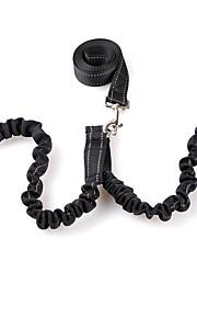 Köpek Tasma Kayışı İkili Köpek Tasmaları Yürüyüş Solid Naylon Siyah