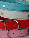 Dog Collar Leash PU Leather White Black Red Blue Pink