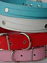 Cachorro Colarinho Trelas PU Leather Branco Preto Vermelho Azul Rosa claro
