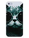 Óculos Cat plástico de volta caso para o iPhone 5/5S