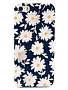 Beautiful Daisies Pattern Hard Case for iPhone 5/5S iPhone Cases