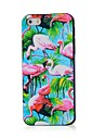Flamingo Pattern Hard Case for iPhone 4/4S