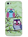 Two Owls on The Tree Pattern TPU Material Soft Back Cover Case for iPhone 5/5S