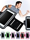 Sports Screen Touch Armband for iPhone 6 Plus (Assorted Colors)