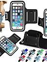 Сенсорный экран vormor® браслет Спорт чехол для iPhone 6 Plus / 6/5 / 5S / 5C (разных цветов)