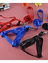 Cat / Dog Harness / Leash Waterproof Red / Black / Blue Nylon