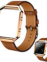 Luxury Genuine Leather Watch band Wrist strap  Metal Frame for Fitbit Blaze