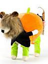 Собака Костюмы Плащи Одежда для собак На каждый день Английский Радужный Костюм Для домашних животных