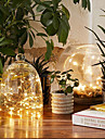 String Lights 50 LEDs Warm White White Multi Color Pink Purple Green Yellow Blue Red <5V