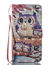 Case For Apple iPhone 7 Plus iPhone 7 Card Holder Wallet with Stand Flip Pattern Full Body Cases Owl Hard PU Leather for iPhone 7 Plus
