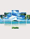 Painettu Valssatut kangasjulisteet Pingoitetut kanvasprintit - Luonto Valokuvaus Comtemporary Moderni 5 paneeli